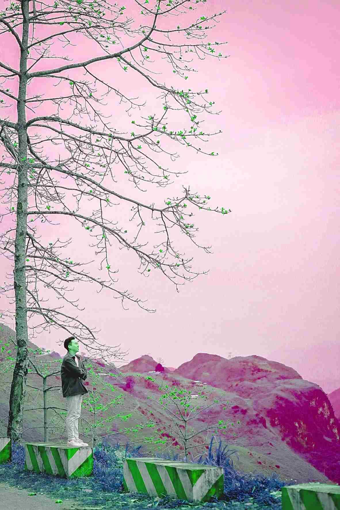 """5 ngày 4 đêm khám phá miền đất """"hoa nở trên đá"""" - 11"""