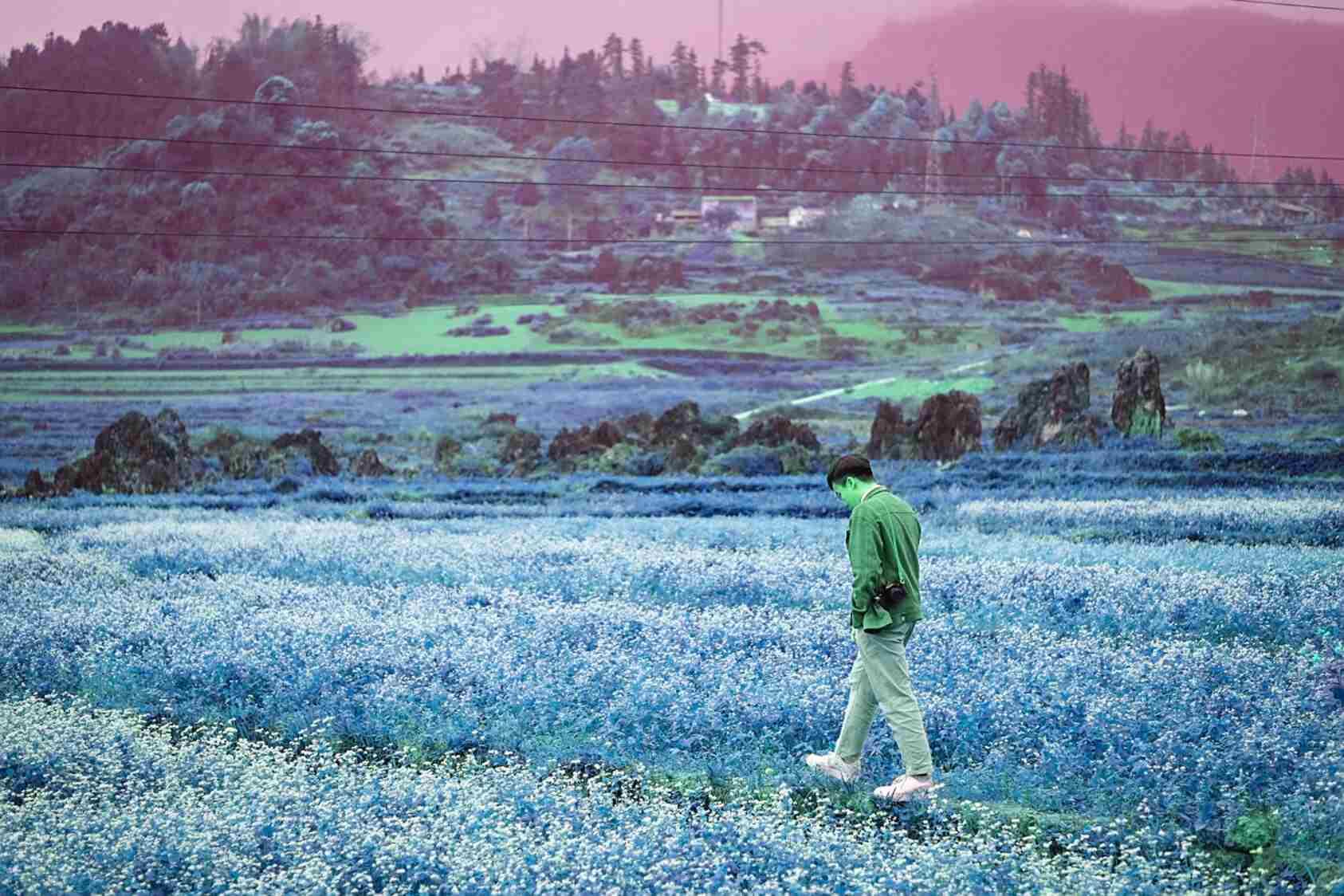 """5 ngày 4 đêm khám phá miền đất """"hoa nở trên đá"""" - 4"""