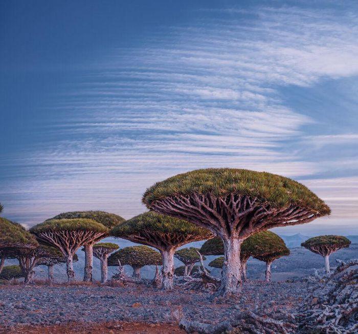 Ngắm nhìn hòn đảo như quang cảnh của hành tinh viễn tưởng - 6