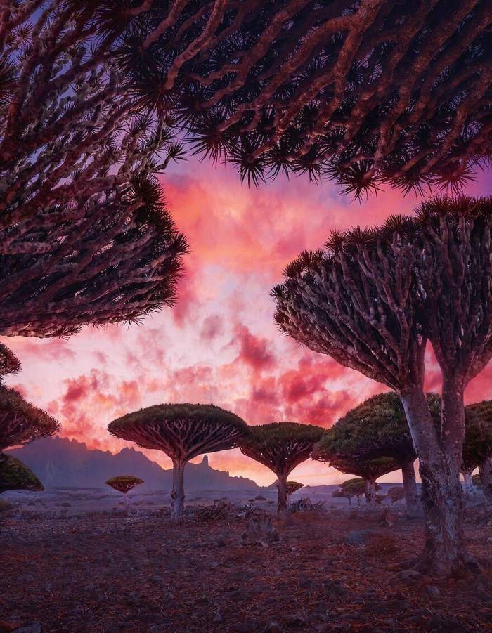 Ngắm nhìn hòn đảo như quang cảnh của hành tinh viễn tưởng - 1