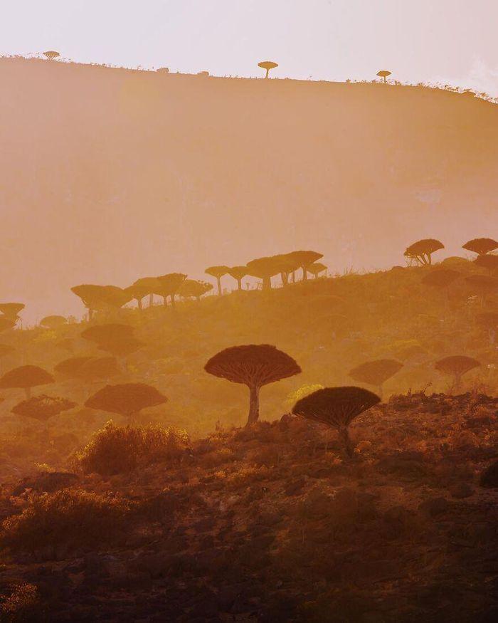 Ngắm nhìn hòn đảo như quang cảnh của hành tinh viễn tưởng - 11